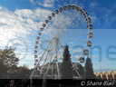 Jan de Koning's 46 Meter Observation Wheel.